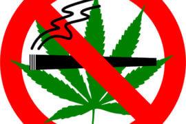 Lawyer Needed for Cranford Marijuana Case