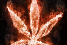 Rahway marijuana charge NJ attorney near me